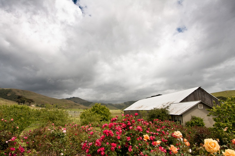 View of the barn at chileno valley ranch on a cloudy day at a wedding