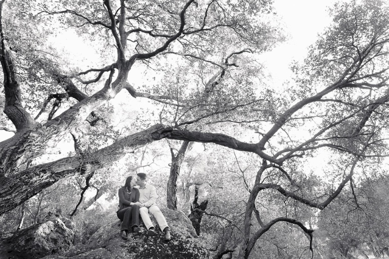 Los Angeles Engagement Session Malibu Wedding Couple with Trees
