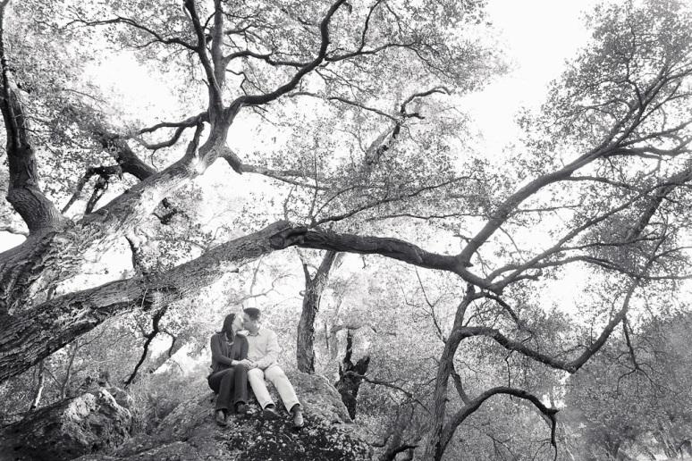 Los Angeles Engagement Session Malibu Wedding Couple with Trees