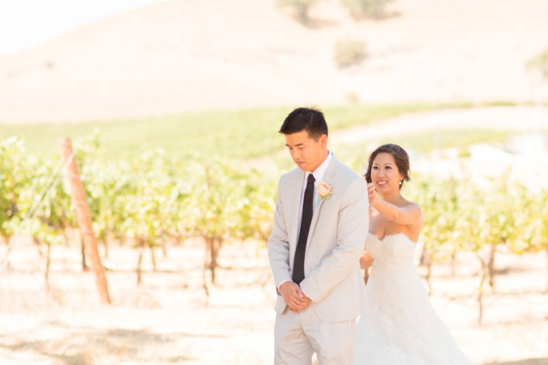 019-San-Francisco-Wedding-Photographer-San-Jose-Gilroy-Clos-La-Chance-Vineyard-Winery-Asian-Tea-Ceremony