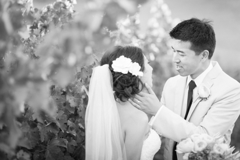 057-San-Francisco-Wedding-Photographer-San-Jose-Gilroy-Clos-La-Chance-Vineyard-Winery-Asian-Tea-Ceremony