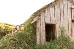 57-San-Francisco-Mendocino-Coast-Sea-Ranch-Lodge-Bohemian-Vintage-Gualala-Photojournalist-Wedding-Photographer