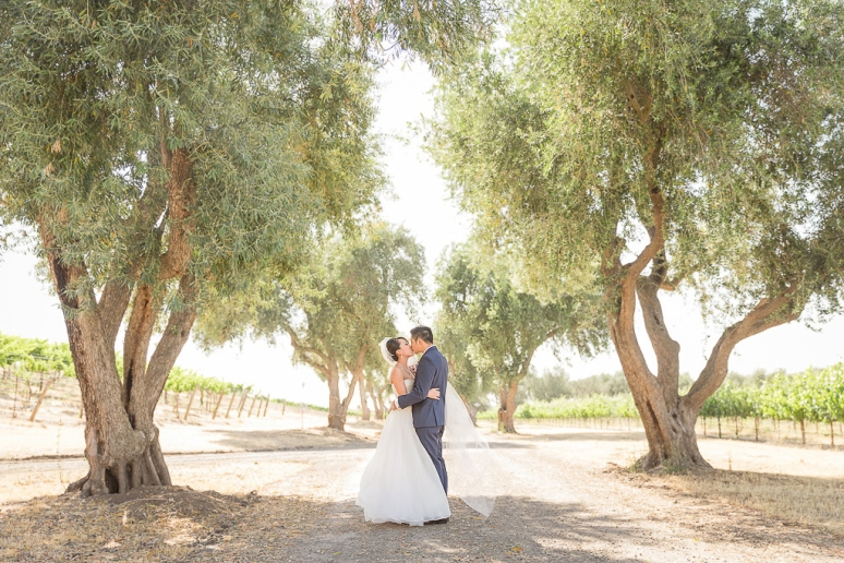 023-California-Wine-Country-Livermore-Wedding-Photographer-Murrieta's-Well-Winery-Wente-Vineyard
