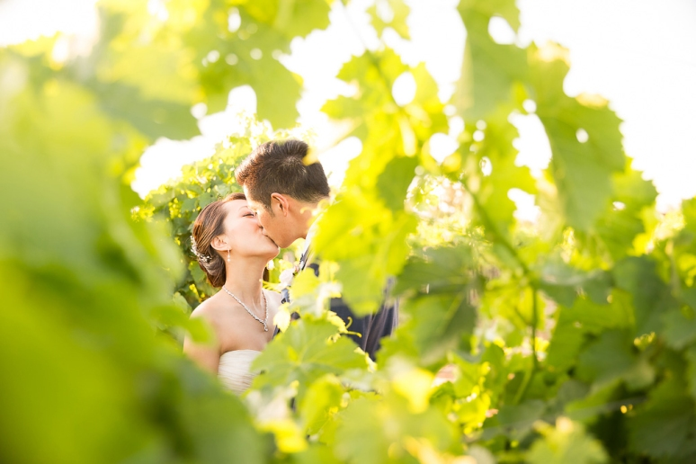 069-California-Wine-Country-Livermore-Wedding-Photographer-Murrieta's-Well-Winery-Wente-Vineyard