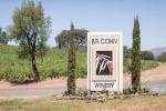 01-Napa-Valley-Sonoma-Wedding-Photographer-Photojournalism-BR-Cohn-Winery-Vineyard-Wedding-Classic-Elegant-Sugar-Rush