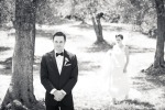 17-Napa-Valley-Sonoma-Wedding-Photographer-Photojournalism-BR-Cohn-Winery-Vineyard-Wedding-Classic-Elegant-Sugar-Rush