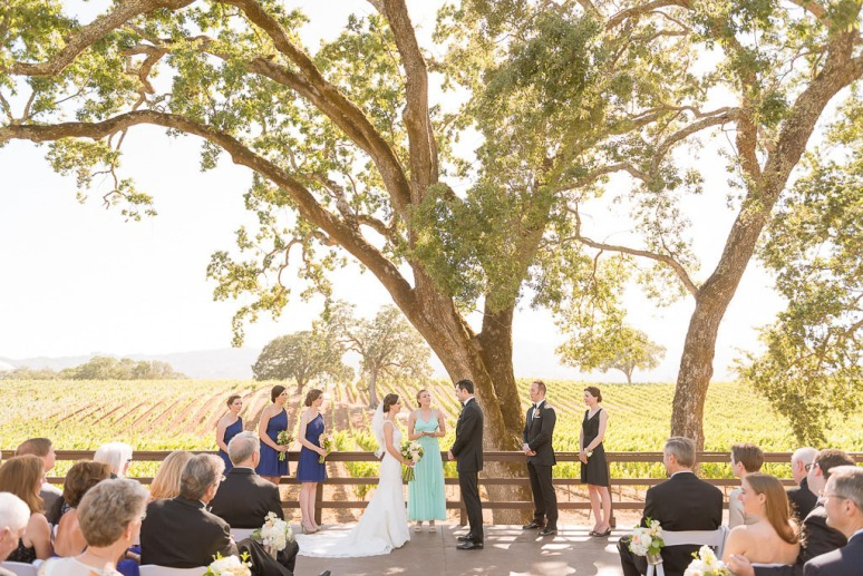 30-Napa-Valley-Sonoma-Wedding-Photographer-Photojournalism-BR-Cohn-Winery-Vineyard-Wedding-Classic-Elegant-Sugar-Rush