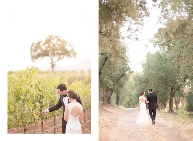 55-Napa-Valley-Sonoma-Wedding-Photographer-Photojournalism-BR-Cohn-Winery-Vineyard-Wedding-Classic-Elegant-Sugar-Rush