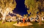 91-Napa-Valley-Sonoma-Wedding-Photographer-Photojournalism-BR-Cohn-Winery-Vineyard-Wedding-Classic-Elegant-Sugar-Rush