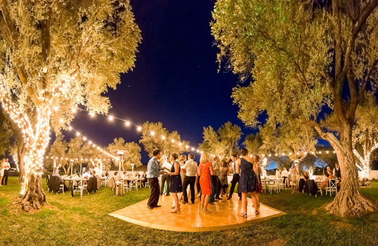 91-Napa-Valley-Sonoma-Wedding-Photographer-Photojournalism-BR-Cohn-Winery-Vineyard-Wedding-Classic-Elegant-Sugar-Rush